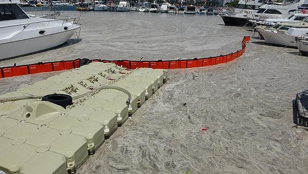 2021/06/canakkalede-ilk-gun-denizden-17-ton-musilaj-cekildi-05456895a388-6.jpg