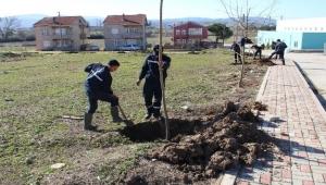 Biga'da 3 ayda 7 bin ağaç dikiliyor