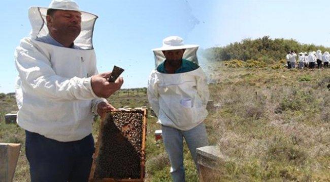 Bozcaada'da Arı Üreticilerine Sertifikaları Törenle Dağıtıldı