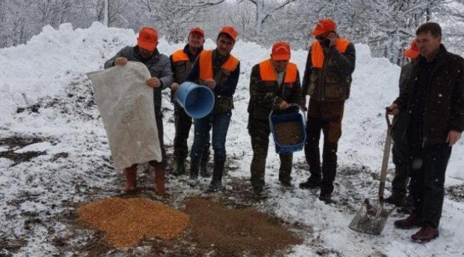 Lapseki'de Yaban Hayvanları İçin Doğaya 450 Kilogram Yem Döküldü