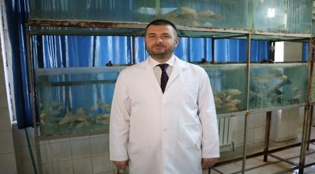 Kur'an-ı Kerim dinletilen balıklar daha hızlı büyüyor