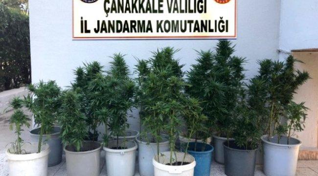 Jandarma ve polisten ortak uyuşturucu operasyonı