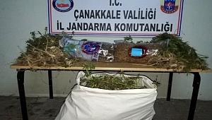 Çanakkale'de 'kenevir' operasyonu