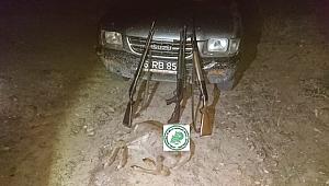 Çanakkale'de karaca avı yapanlara para cezası