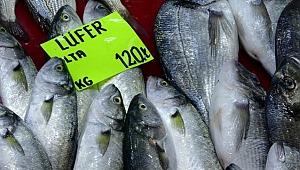 Lüferin kilogram fiyatı bir haftada 60 lira düştü