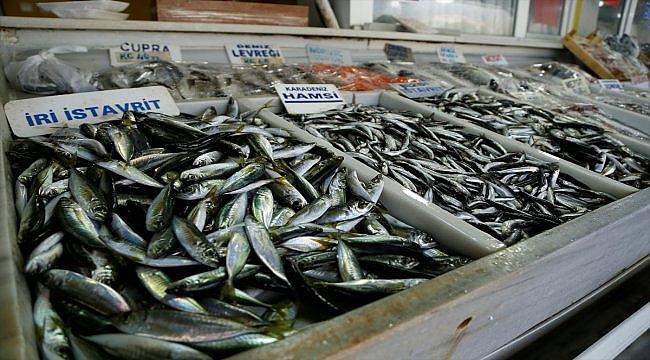 """Balıkçılar yeni yılda """"hamsi"""" sevinci yaşıyor"""