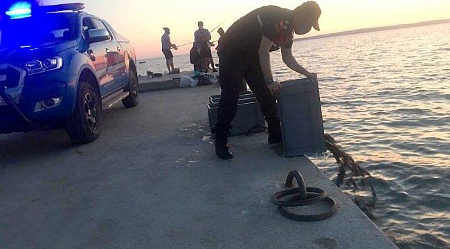 Çanakkale'de deniz patlıcanı operasyonu