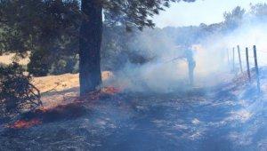 Bayramiç'te anız yangını ormana sıçramadan söndürüldü