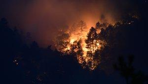 Çanakkale'de orman yangını kontrol altına alınmaya çalışılıyor