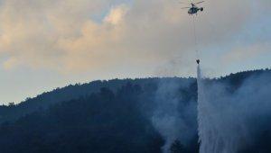 Çanakkale'deki orman yangınına havadan müdahale yeniden başladı