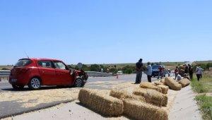 Edirne'de otomobile giren arı kazaya neden oldu