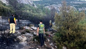 Ezine'de 2 dönüm ormanlık alan yandı