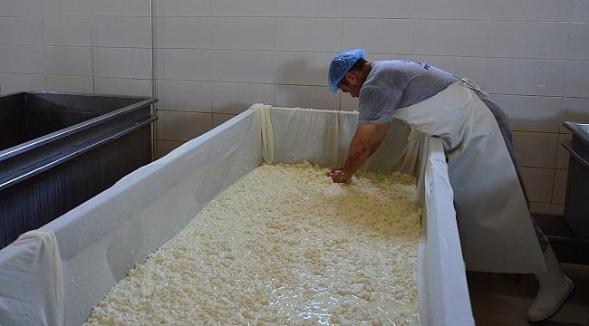 """Tüketiciye gerçek Ezine peyniri için ambalajında """"EPD logosu arayın"""" uyarısı"""