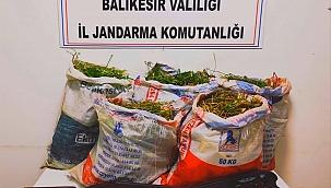 Ayvalık'taki uyuşturucu operasyonunda 5 şüpheli gözaltına alındı
