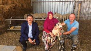 Biga'da üç köyde genç çiftçi projesi uygulandı