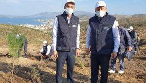 Limak Enerji'nin Yeşil Dönüşüm Ormanları Projesi, Balıkesir'de devam ediyor