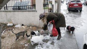 Bere ve çanta örerek sokak hayvanlarını besliyor