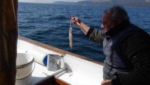 Çanakkale'de olta balıkçısının yüzünü kalamar güldürdü